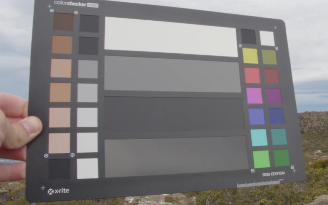 How To Match iPhone 12 Pro to Blackmagic, ARRI, or RED with Cinematch & FiLMiC Pro Log V3
